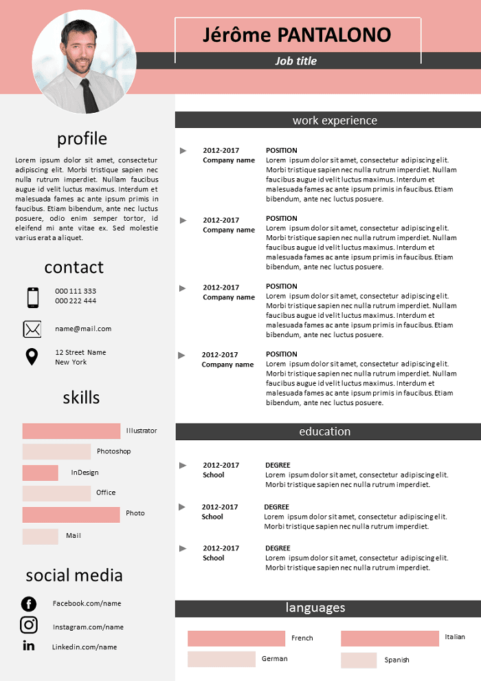 Pink and grey Resume