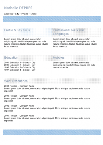 Resume Blue with columns