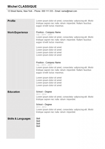 Resume  Grey with columns