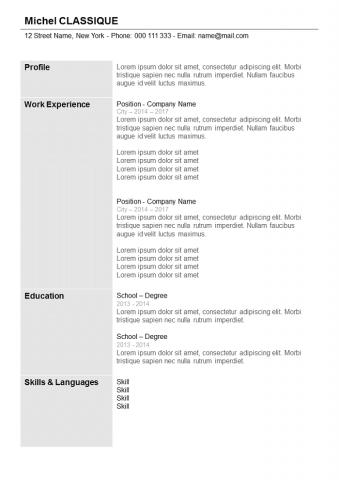 Resume  Grey with columns