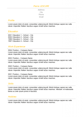 Resume Basic orange