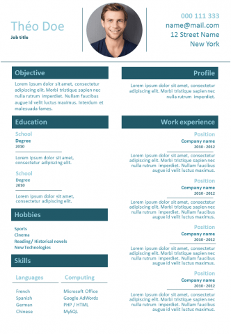 Resume Freelancer
