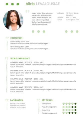 Attractive Resume