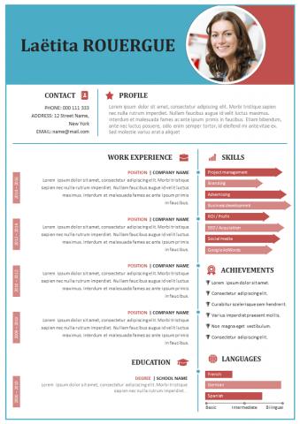 American Resume CV