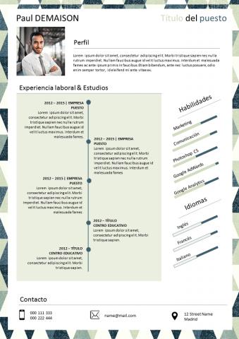 Curriculum Sintético