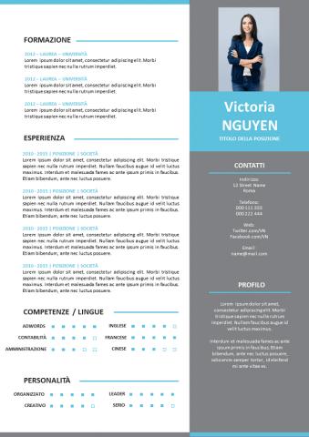 CV Moderno Grigio