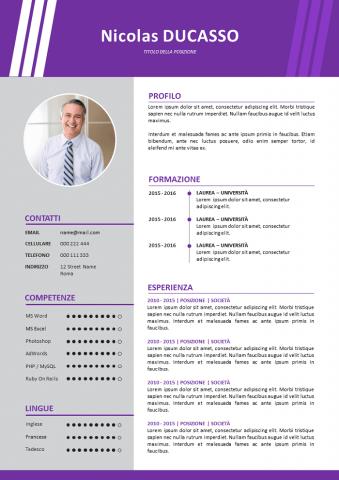 CV Per Venditori Esperti