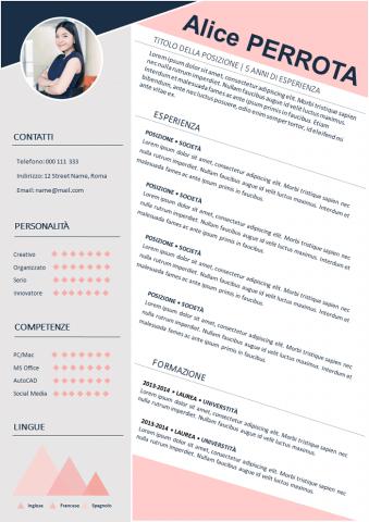 CV Rosa Particolare