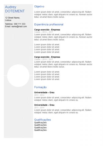 CV Com Coluna Cinza/Limpo