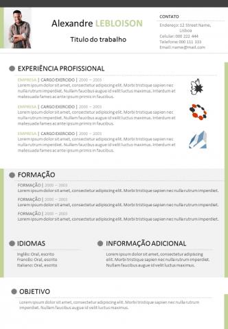 CV Libre Office