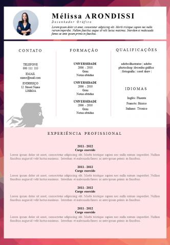 CV Serviço Público